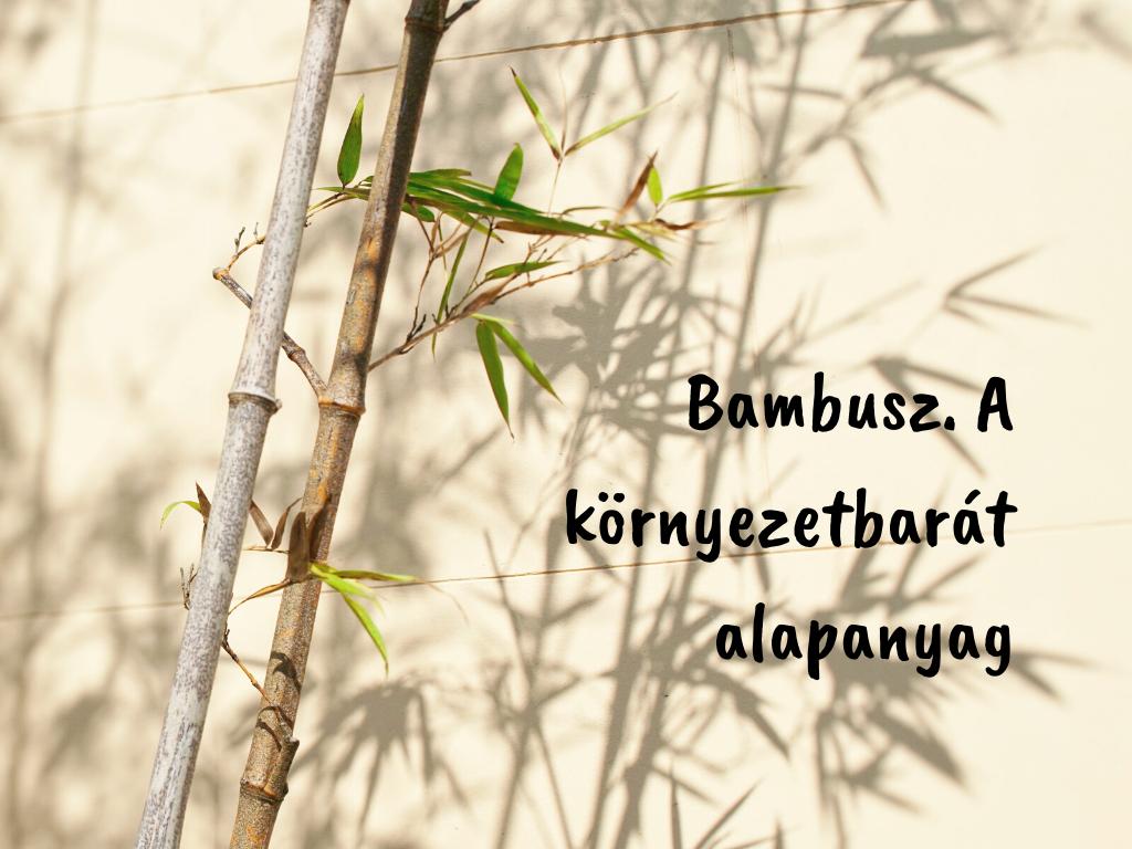A környezetbarát bambusz