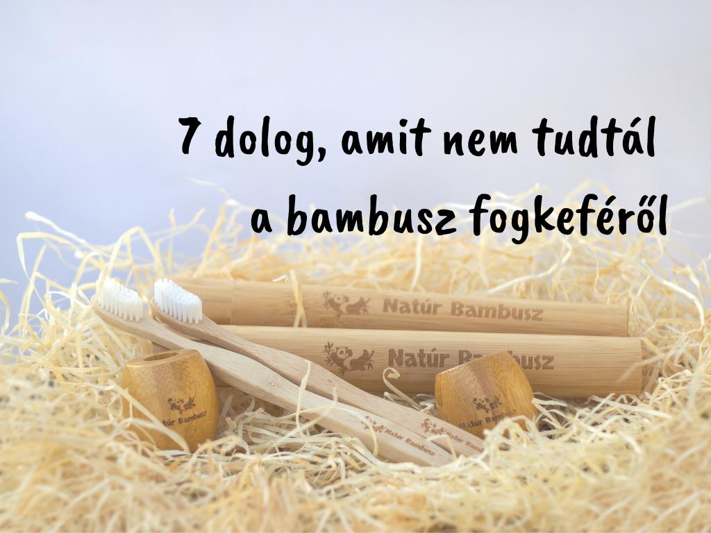 7 dolog a bambusz fogkeféről